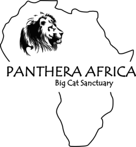 Panthera Africa Big Cat Sanctuary