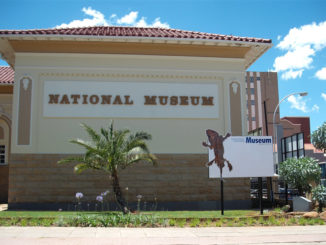 National Museum Bloemfontein   Natural history, cultural history and art
