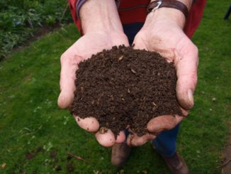 Good Bugs Vermicompost Worm Farming / Vermiculture